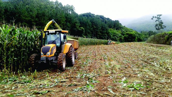 Obras e Agricultura trabalham para atender população